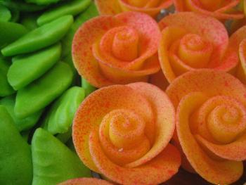 Sprayed Orange Roses